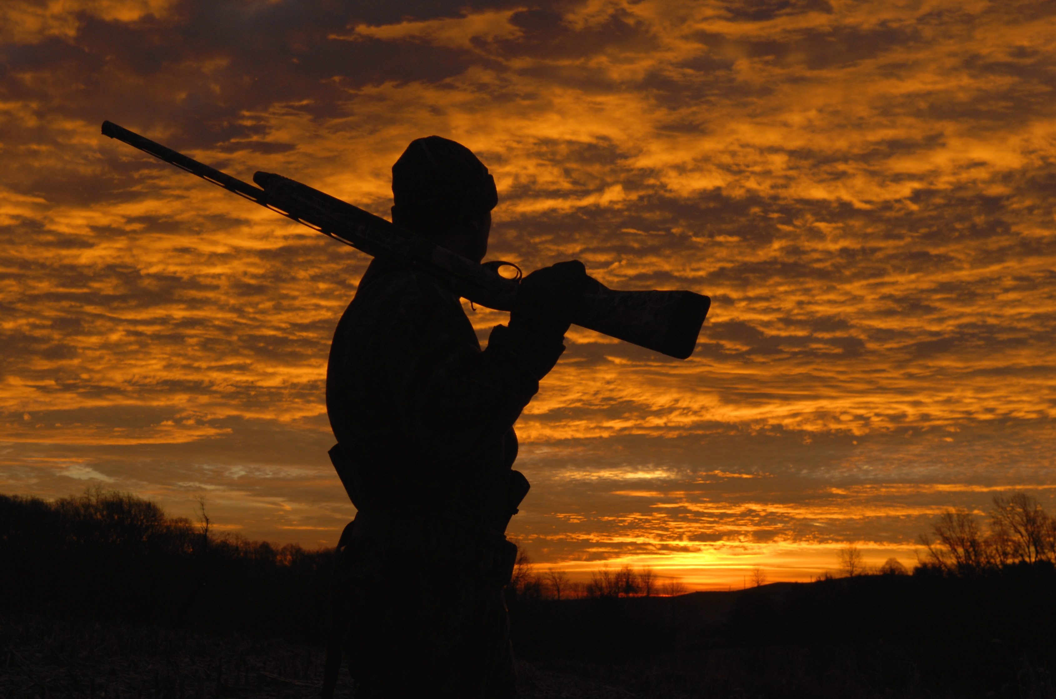 Essential Survival Gear For Elk Hunting