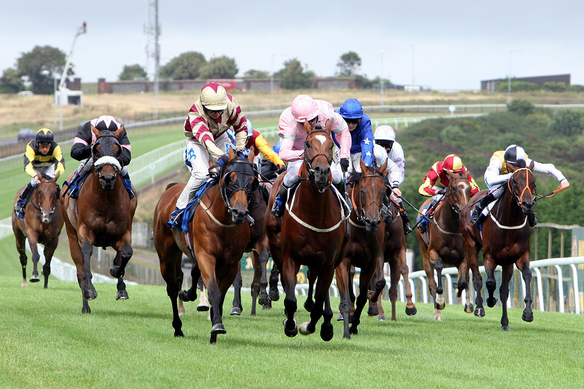 Horse Racing Betting Tips For Beginners