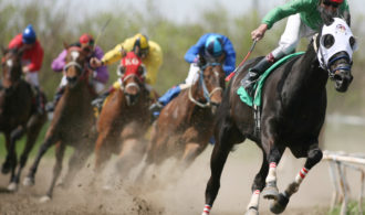 On The Web Sport Activity Gambling and Horse Race