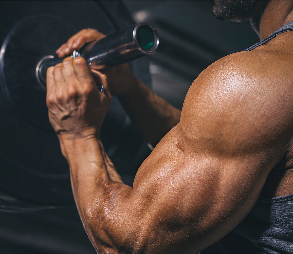 Stay Healthy & Stay Fit by Following Muscle Building Program