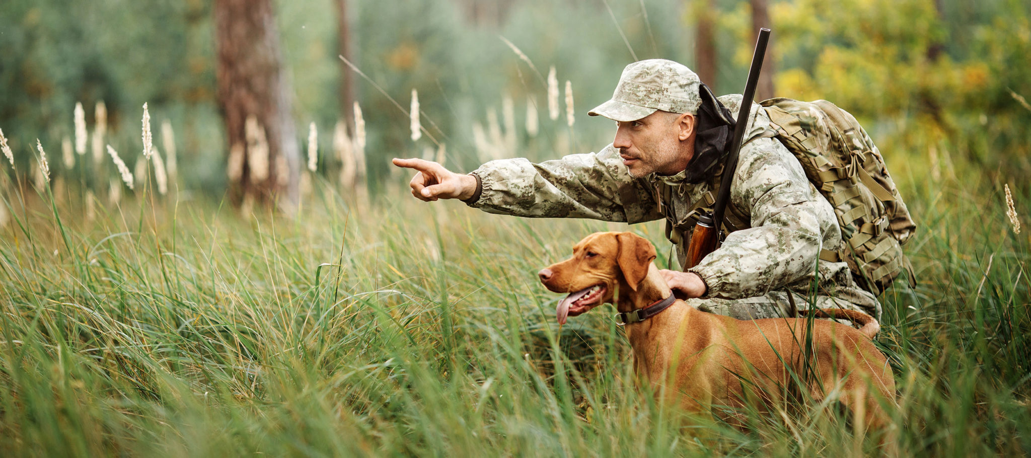 The Best Skills to be a Waterfowl Hunter