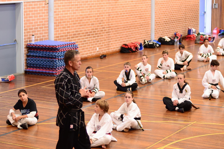 The Mixed Martial Arts Bully